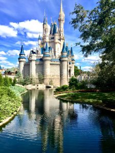 View of the Disney park is just one of many benefits of moving to Orlando.