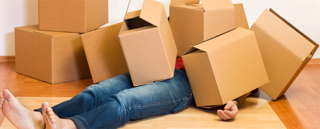 Surrounded by Boxes