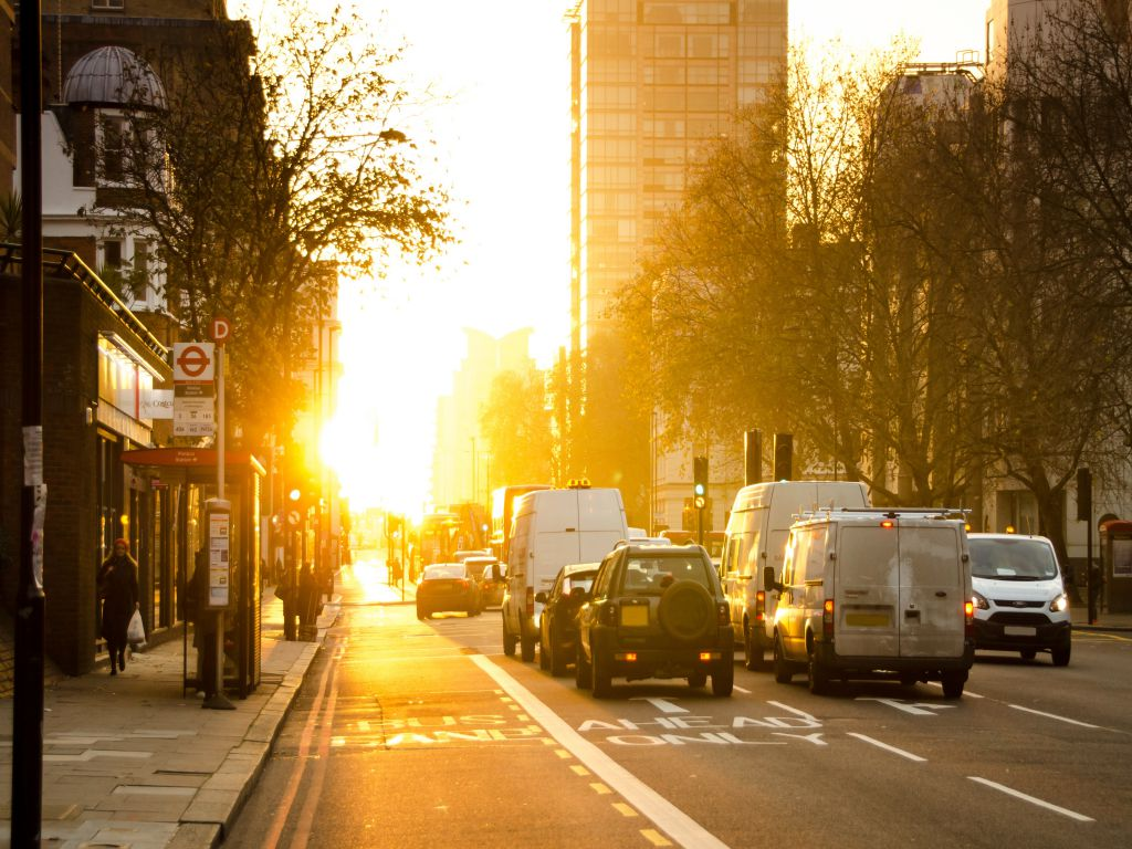 Dawn on an urban street, with cars and vans waiting for the green light.