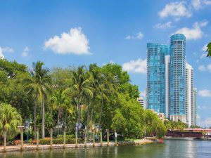 Palm trees and glass buildings next to a canal.