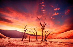 A desert.