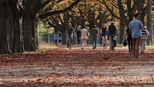 A group of people walking in a park.