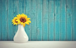A vase with a sunflower in it.