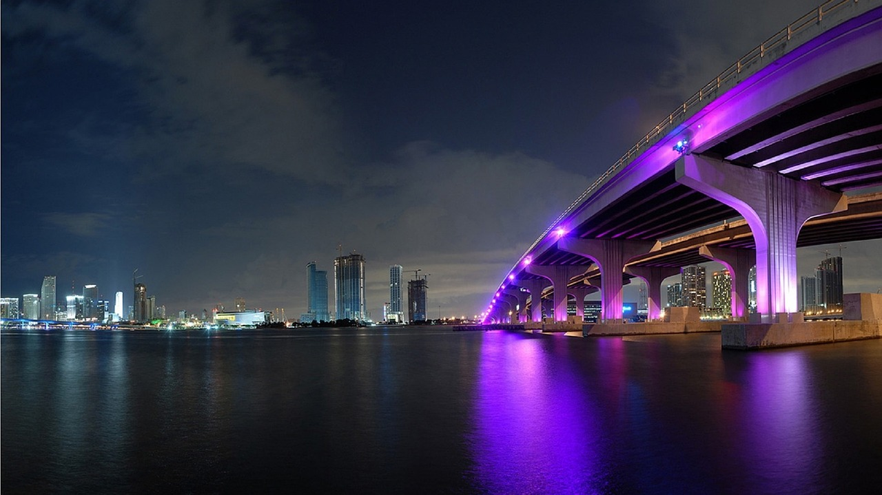 a photo of Miami at night