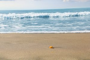 Beach on sunny day