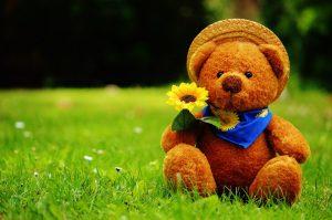 a teddy bear in a garden